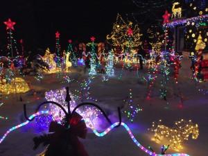 Maisie's Magical Christmas House Lights Edmonton